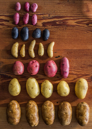 WHY IDAHO? POTATO LOVER'S MONTH IS A GOOD TIME TO FIND OUT!