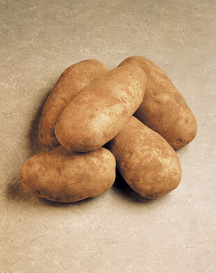 Five Idaho Russet Burbank Potatoes