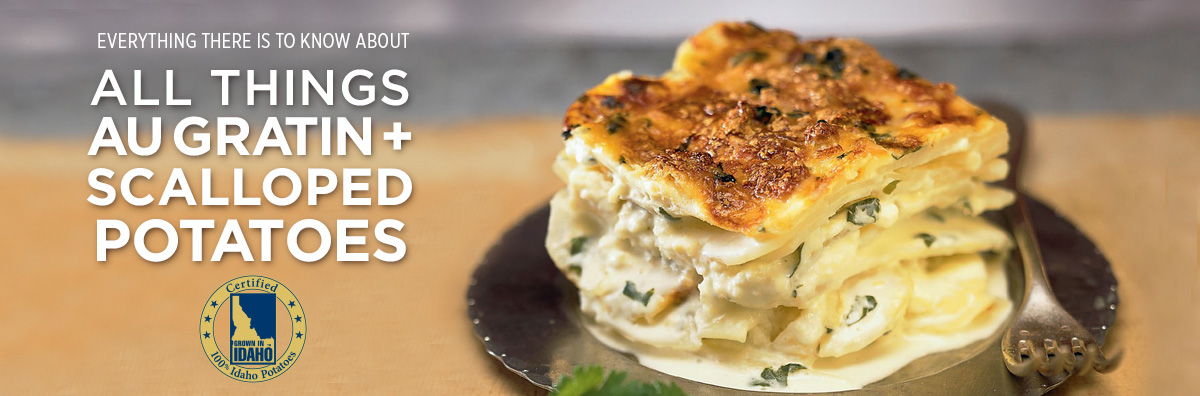 All Things Au Gratin Potatoes Banner